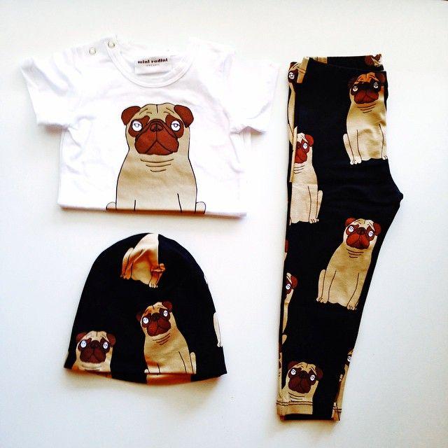 mini rodini pugs leggings