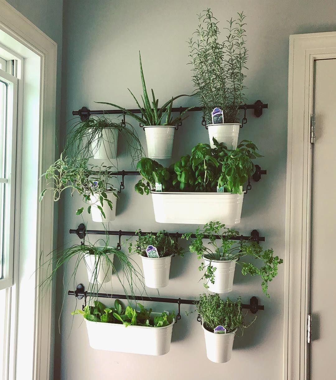 indoor herb gardens on instagram for the kitchen well on indoor herb garden diy wall kitchens id=57573