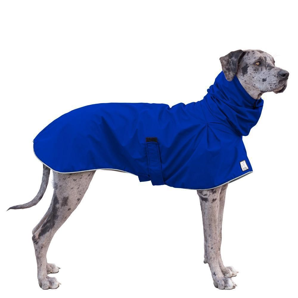 Great Dane Rain Coat Great Dane Dogs Great Dane Puppy Dogs