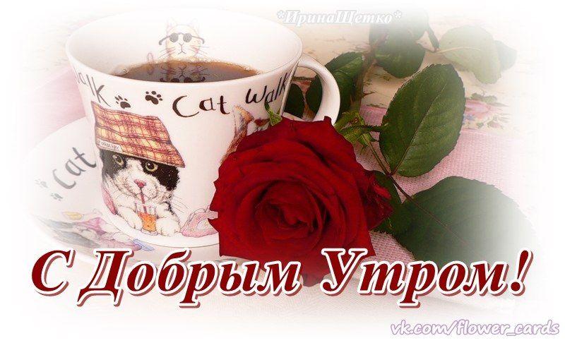 открытки картинки доброго утра любимая виктория развлекаться