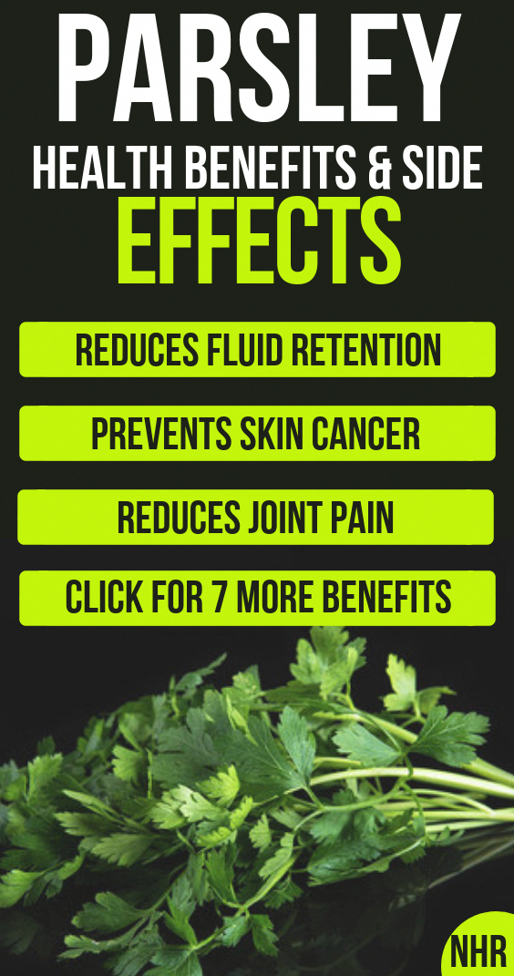 1ac5cce08ee 10 important parsley health benefits and side effects you need to know  about, you will also learn the nutritional values of parsley, the dangerous  side ...