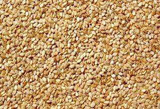 هل تعرف ان السمسم اكثر مادة غذائية تحنوي على الكالسيوم اسمسم ضروري لسلامة العظام والاسنان لانة يحت Benefits Of Sesame Seeds Sesame Seeds Planting Seeds