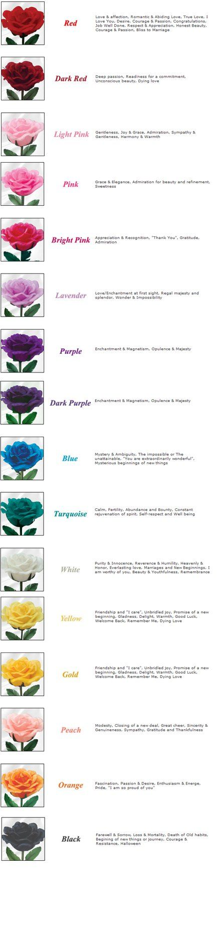 Meaning Of Color Of Roses Rose Color Meanings Color Meanings Flower Meanings