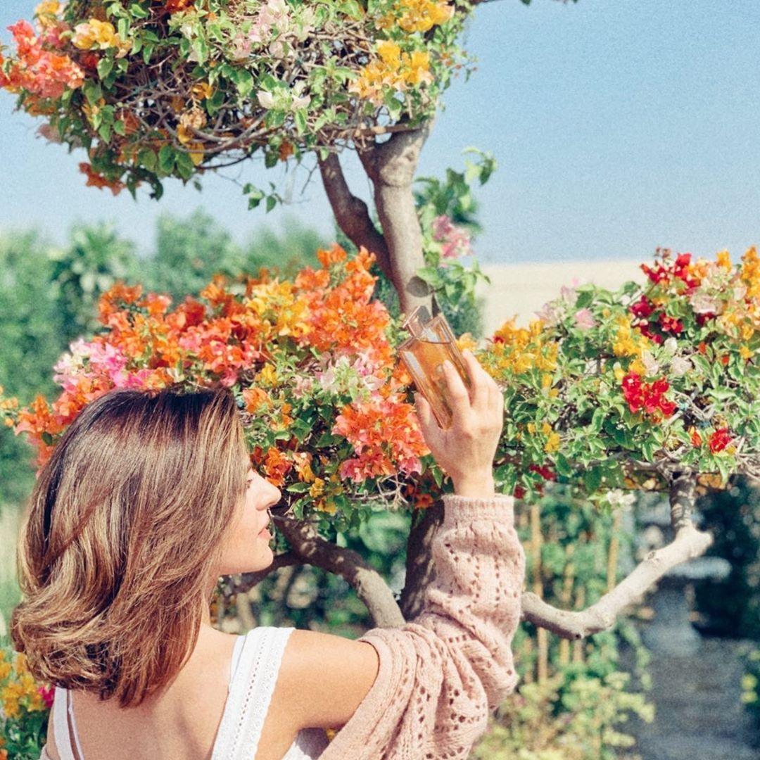 Safa Srour صفا سرور On Instagram و رح نبلش شهر السحوبات و الهدايا اول مسابقة للأسبوع هي عطورات ايدول من لانكم عشر رابحات 1 عملو تاغ اصدقلئكم 2 Travel