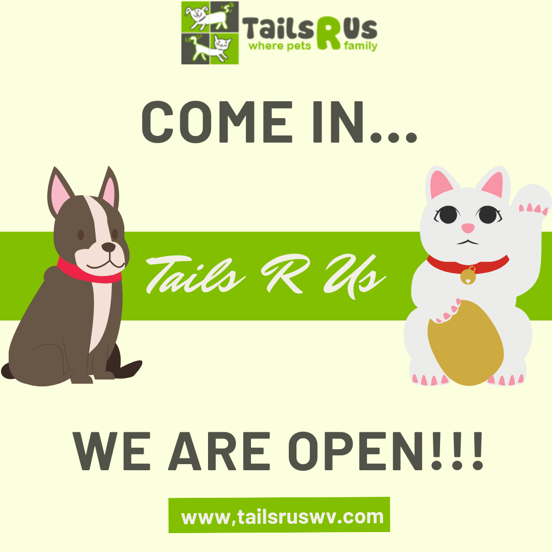 Hi Guys After Being Temporarily Closed For A While We Are Happy To Announce That We Have Re Opened And All Services Are Now In 2020 Family Pet Dog Friends Dog Store