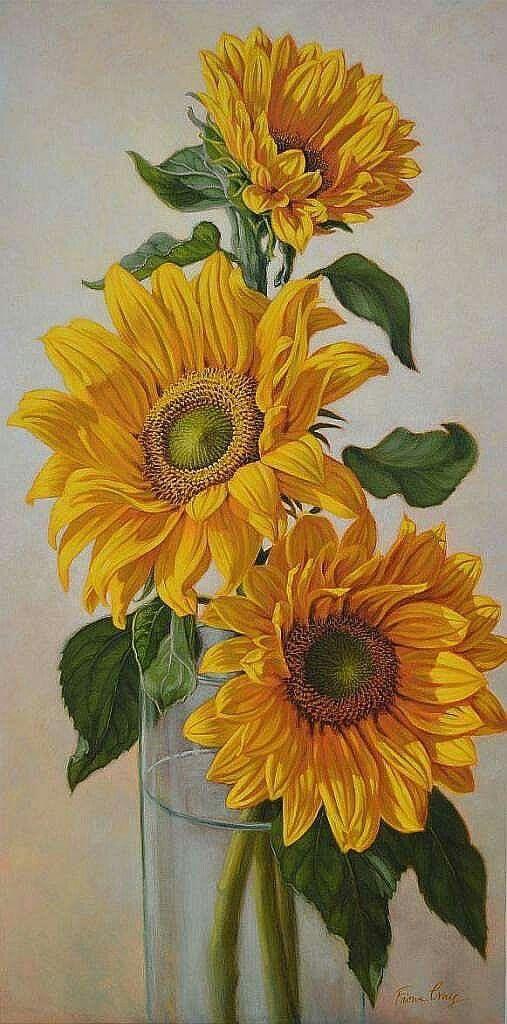 fiona craig flowers life