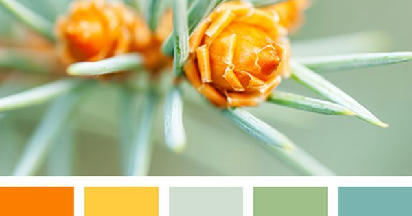 Liked On Pinterest Das Gelb Etwas Heller Zitronengelb Color