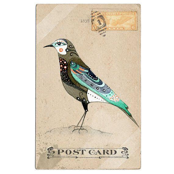 love this illustrations!!! #bird #illustration