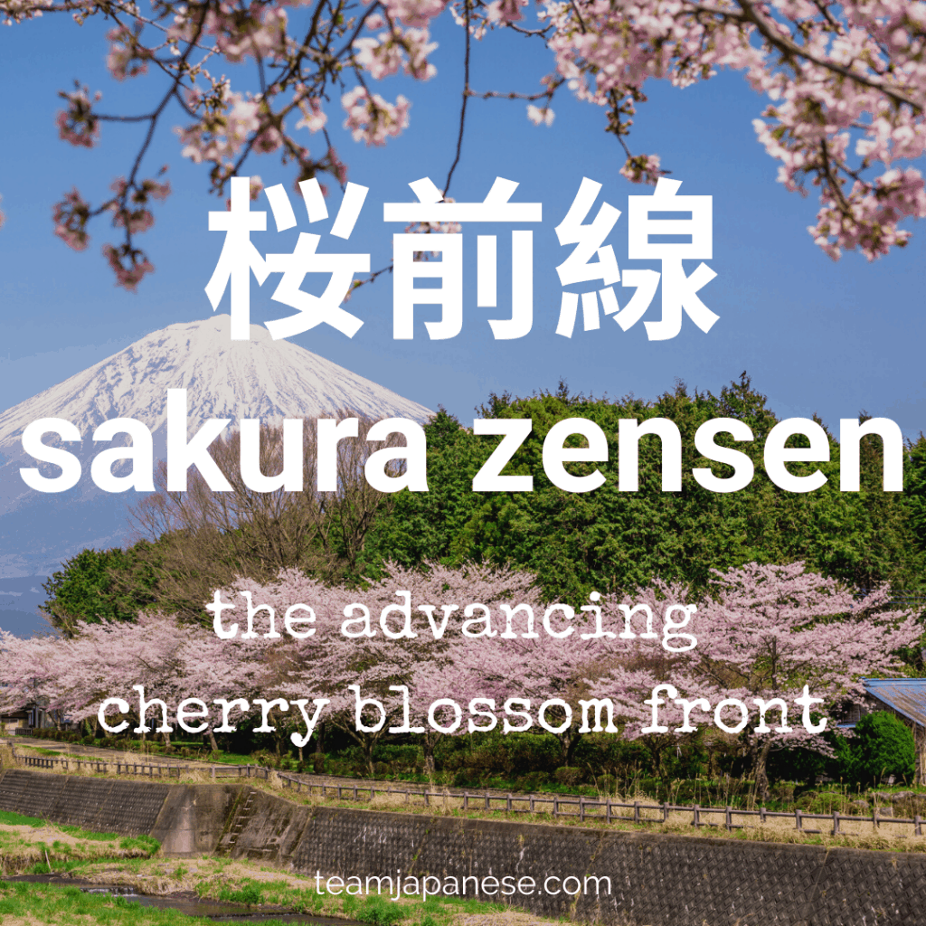 16 Essential Japanese Words For Spring In 2021 Spring Words Japanese Words Japanese