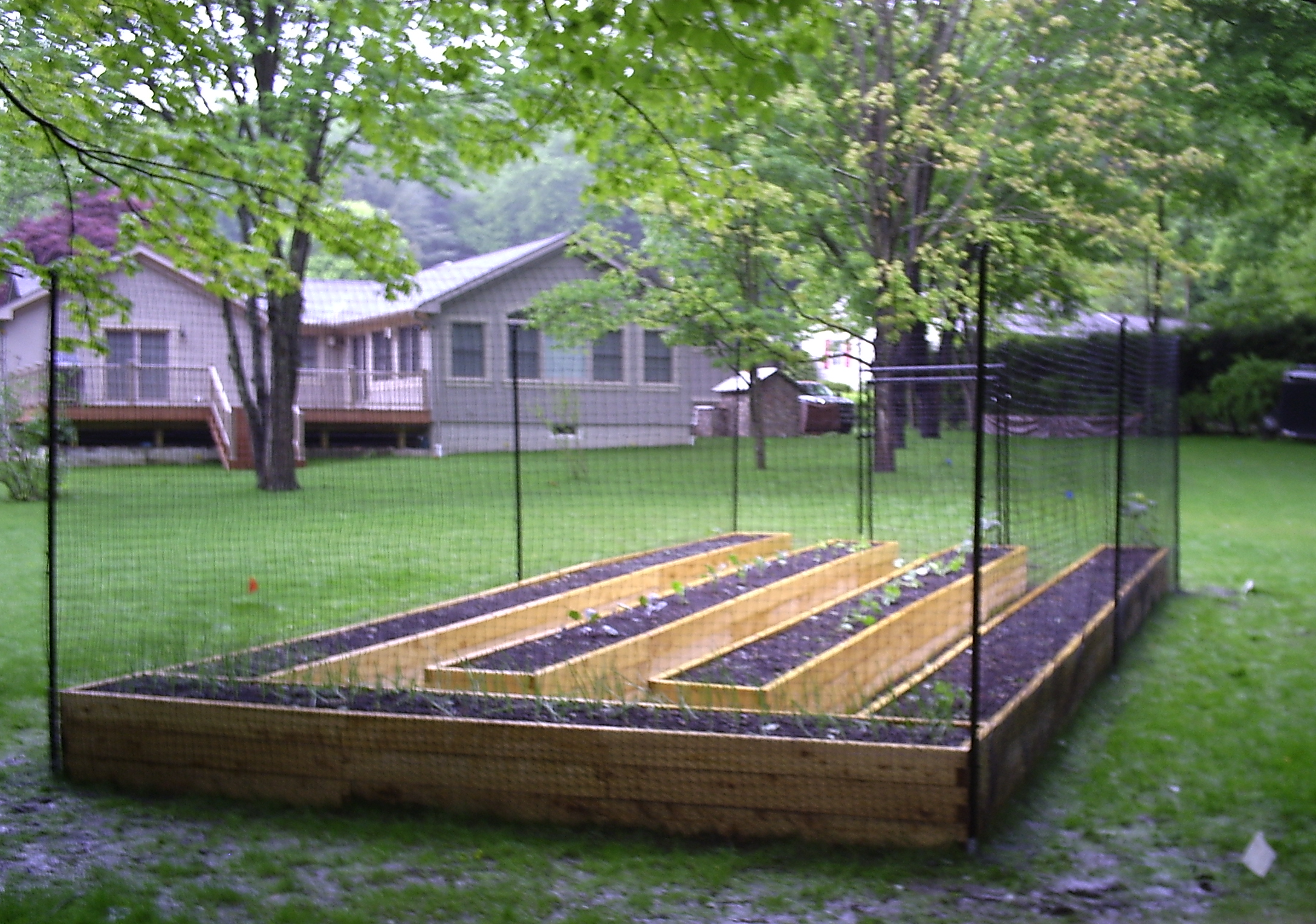 This garden has two great deterrents raised beds AND