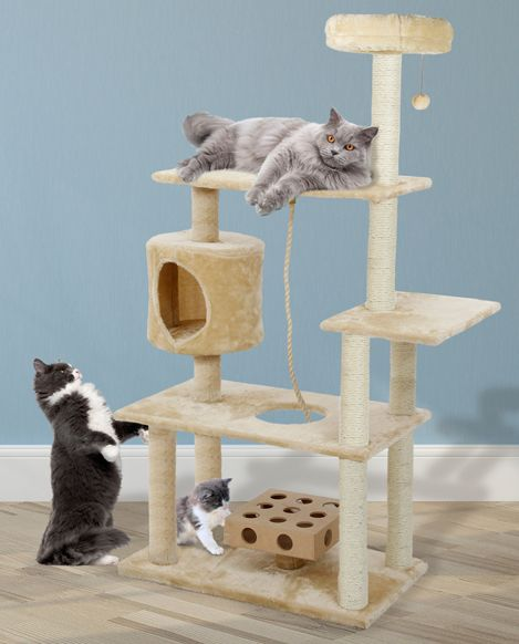 Tiger Tough Intelligent Cat Playgrounds Cat Playground Cats Cats With Big Eyes