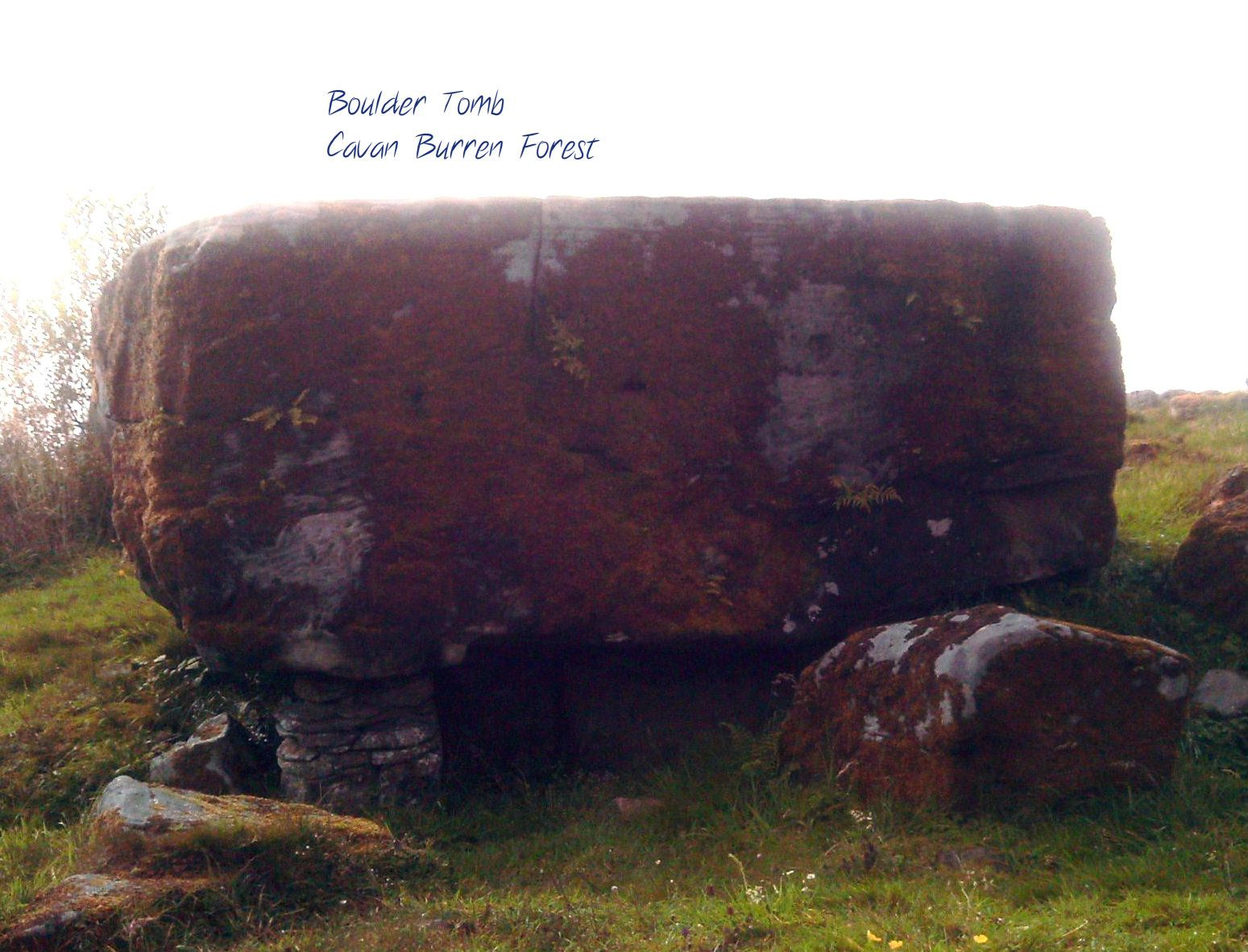 The Cavan Burren Forest has dolmens, wedge and boulder tombs, hut sites and the magical presence of ancient ancestors.  The last resident in the 1960s told a local storyteller that he always felt their watchful presence.