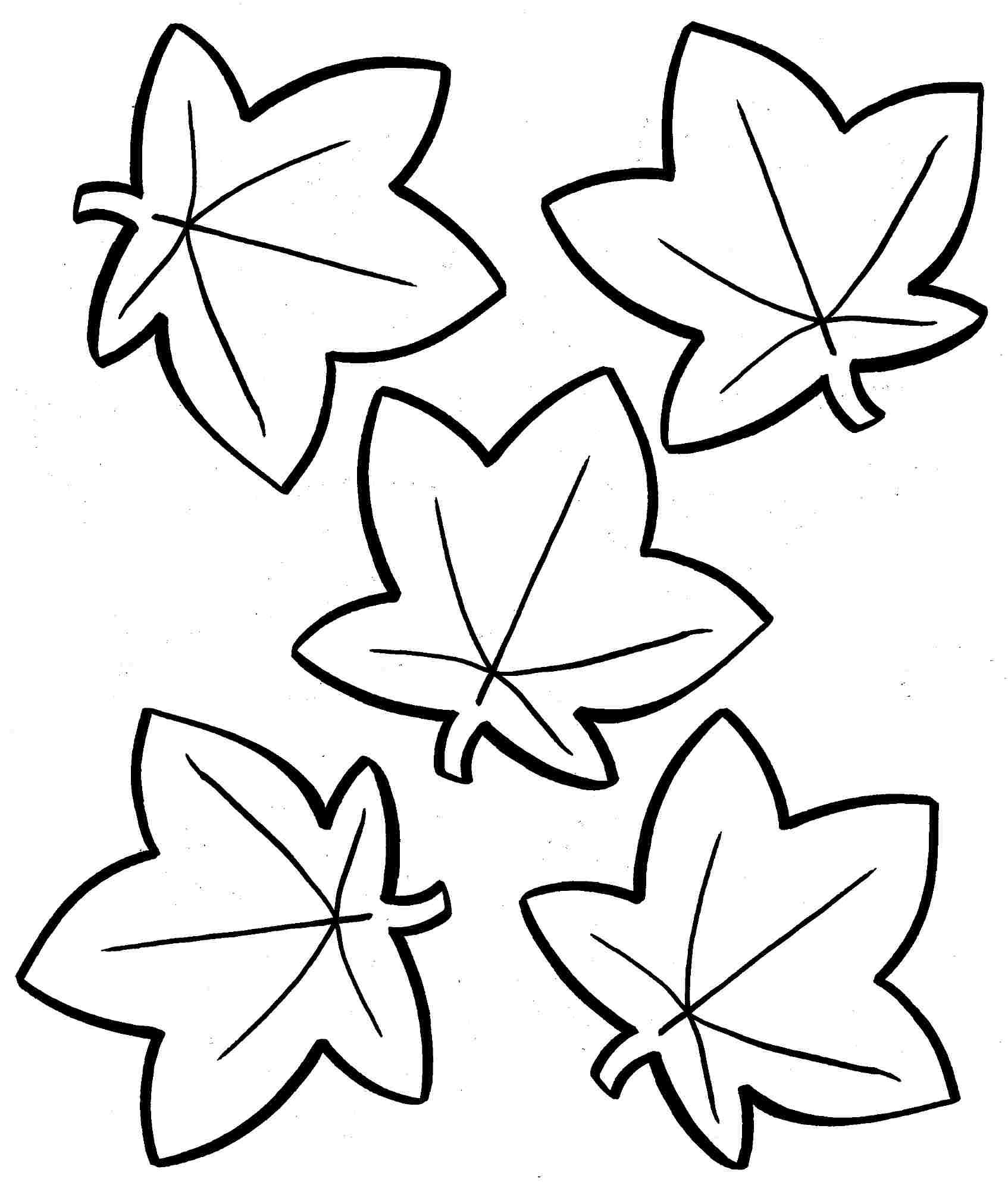 Fall Leaves Coloring Pages Printable Autumn Leaves Coloring Page