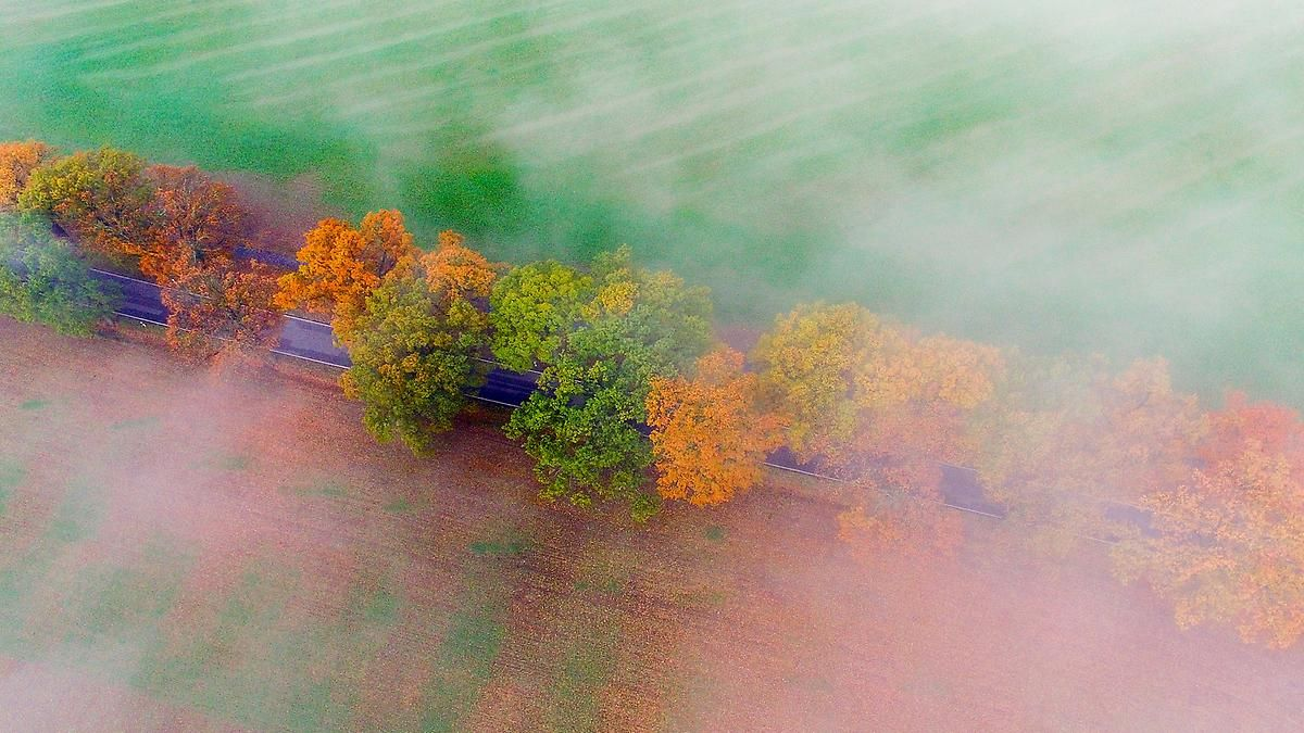 Ruhiges Herbstwetter: Temperaturen gehen langsam, aber stetig zurück
