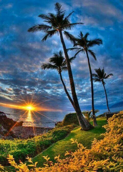 Hawaii  Cash back on all your travel, shopping and entertainment through http://cashbacksecret.com