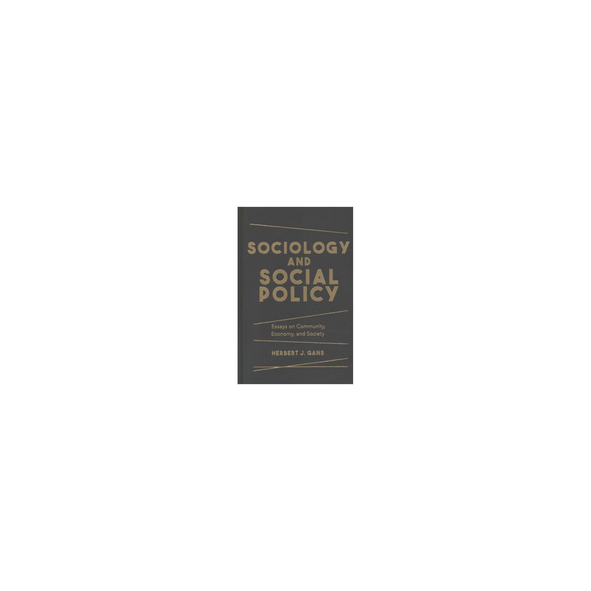 sociology and social policy essays on community economy and  sociology and social policy essays on community economy and society hardcover