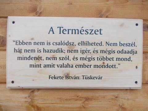 szép idézetek a természetről Fekete István idézet   Quotes, Messages, Words