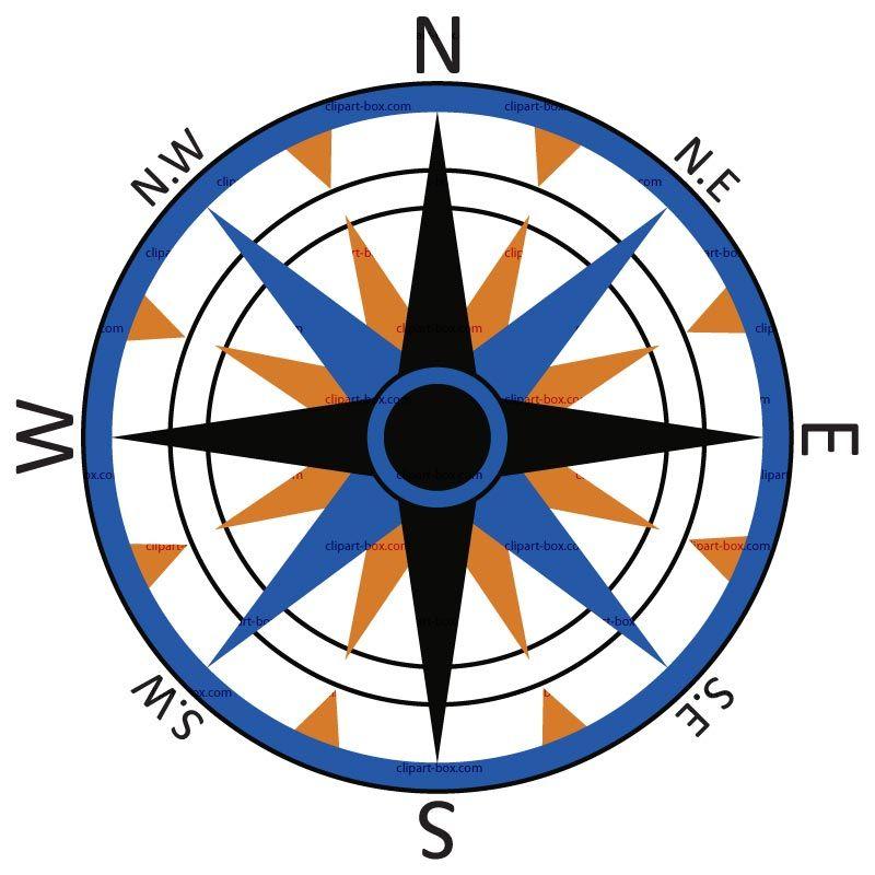 Compass blue. Gold rose sea life