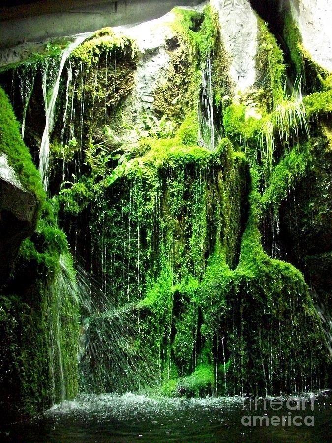 indoor-waterfall-aeryn-arquette.jpg (675×900) | Indoor ...