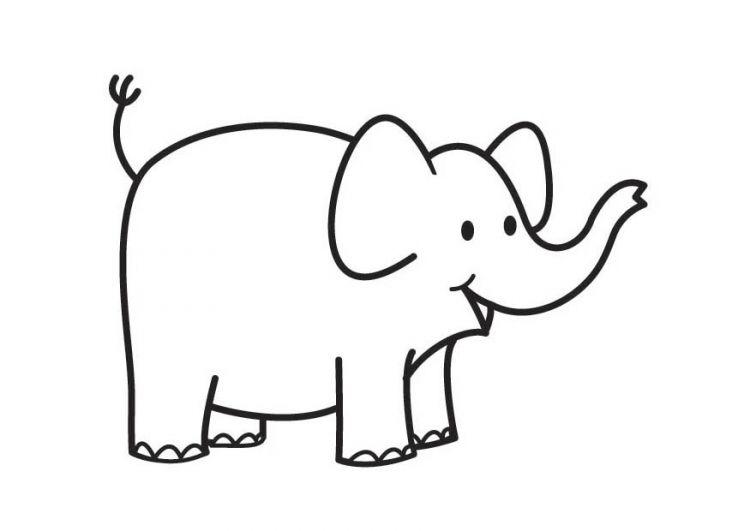 Colorear Dibujo Elefante – Para Preescolar