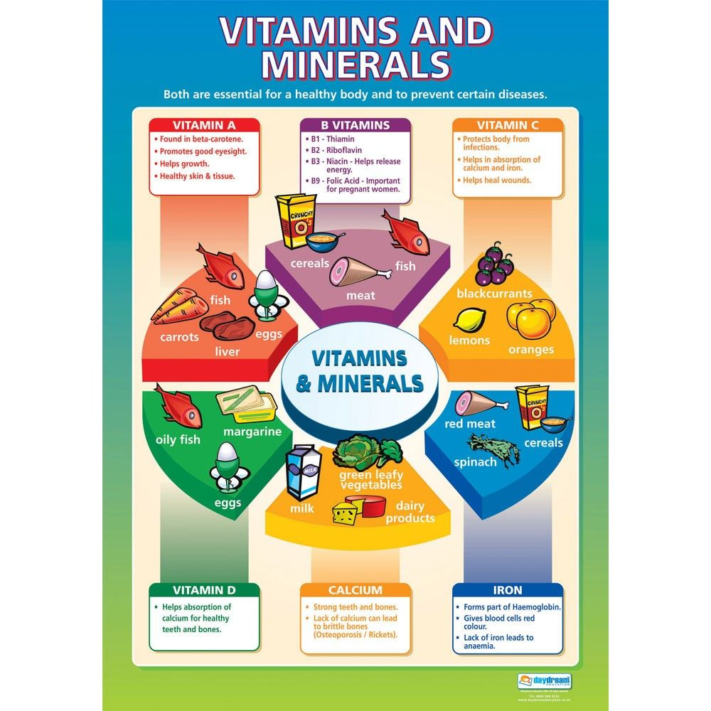 Success Comes From Learning Read All About Vitamins