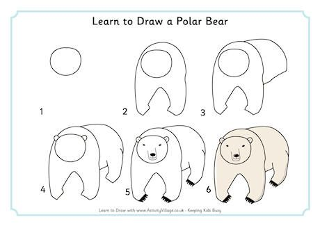 Learn To Draw A Polar Bear How To Draw Polar Bear