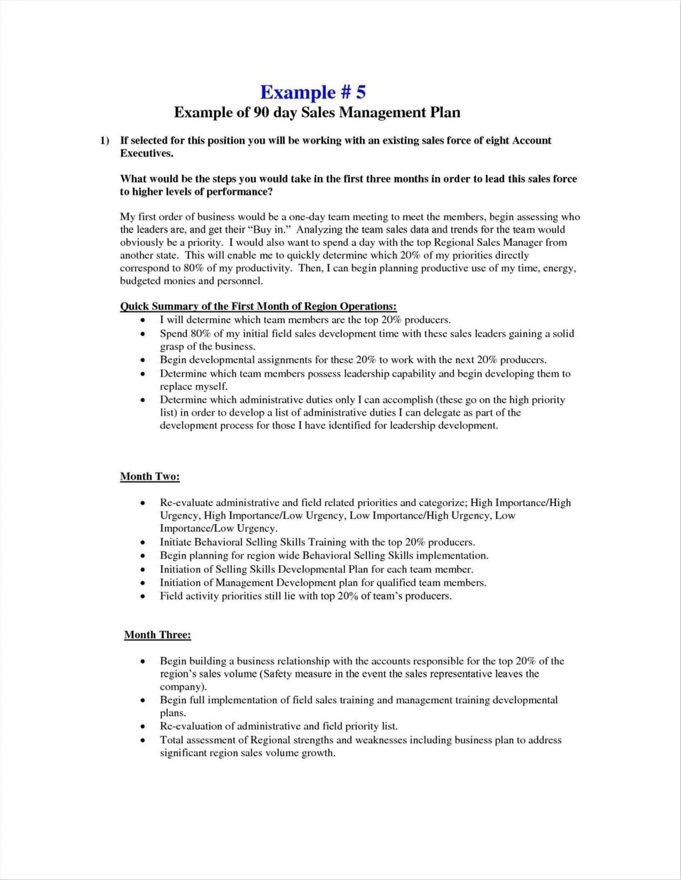 Valid Business Plan Template For Sales Rep With Images