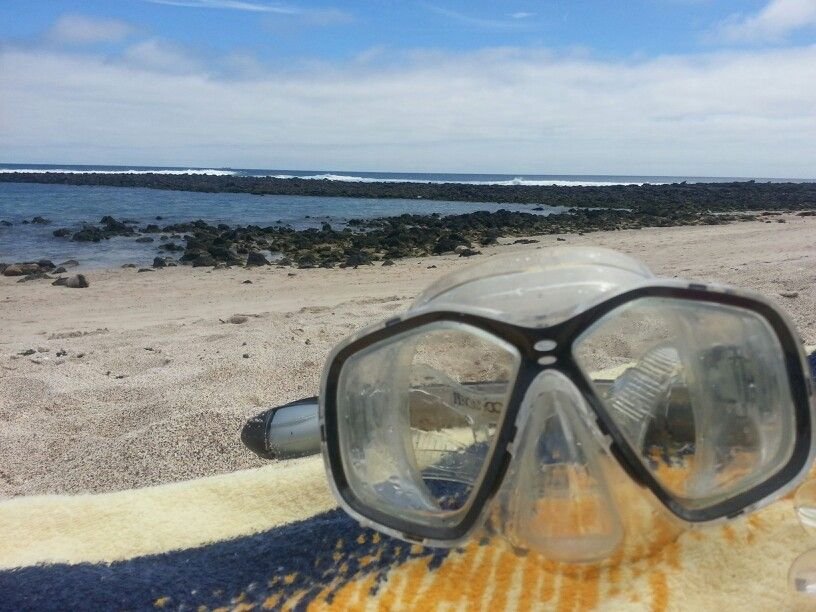 Snorkeling time!! Snorkeling, Around the worlds, Glasses