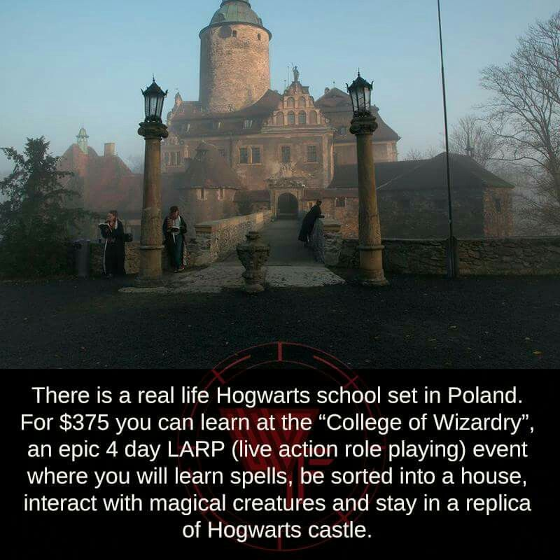 Hogwarts! Best vacation ever! Vacation. Harry Potter