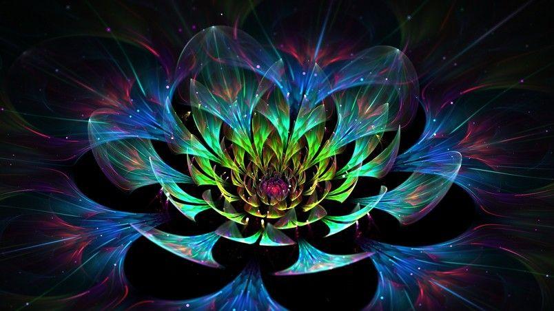 3d lotus flower hd wallpaper fractals pinterest lotus flower 3d lotus flower hd wallpaper mightylinksfo