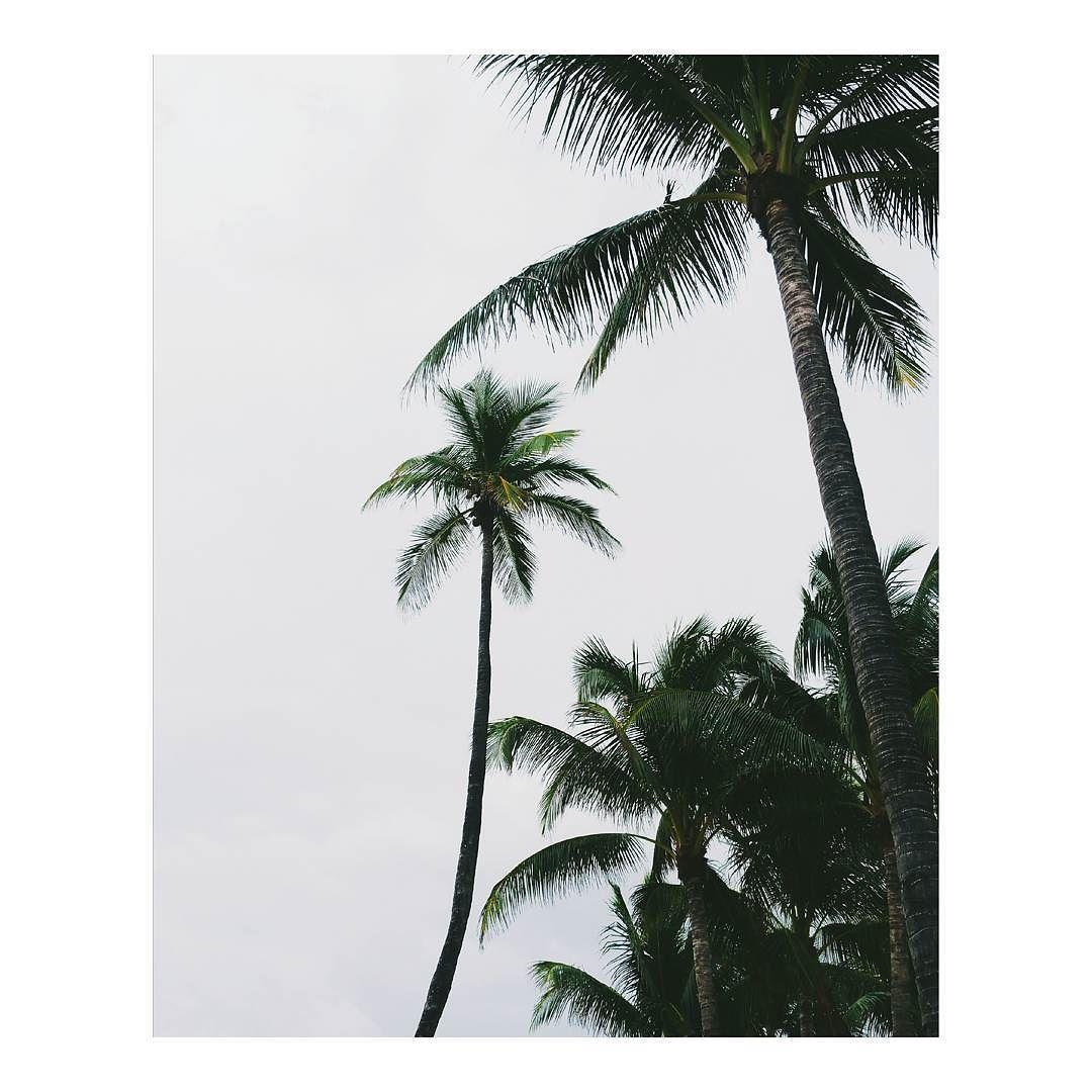 More minimal Miami memories. by laurazalenga