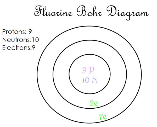 Fluorine Bohr Diagram.Bohr Diagram For Fr