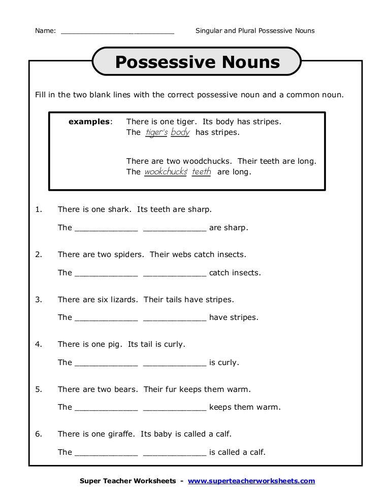 Examples of Plural Possessive Nouns