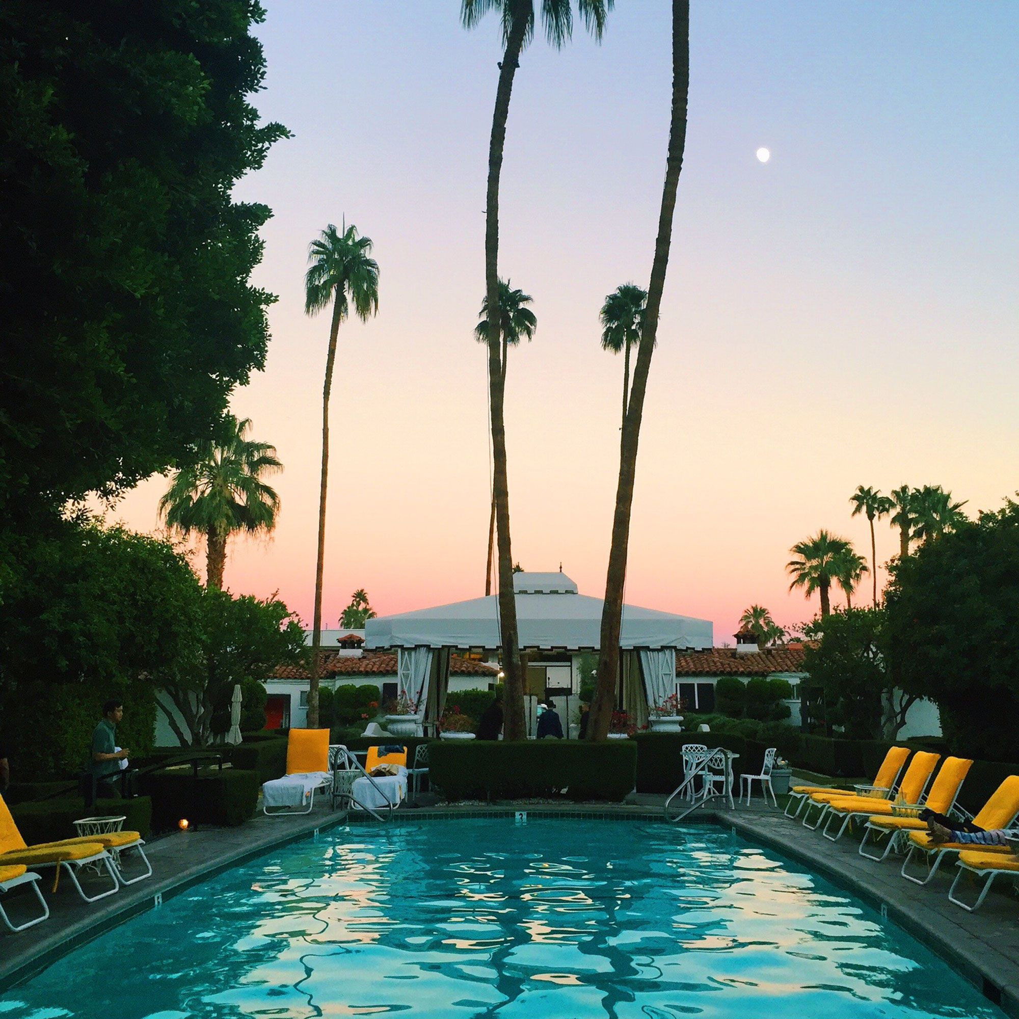 6 Palm Springs Hotels Where All The Cool Kids Hang In 2019 Travel