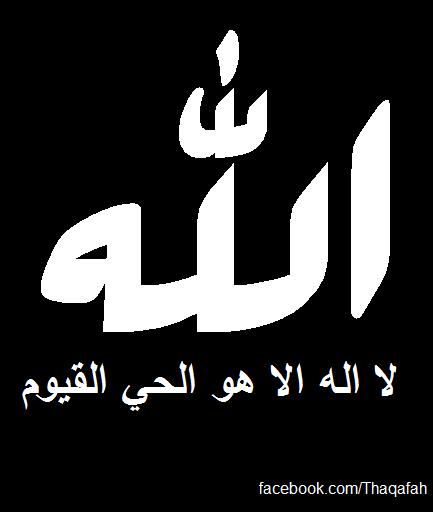 شبكة مصر الله لا اله الا هو الحي القيوم ثقافة