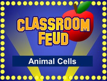 classroom feud powerpoint template - plays like family feud, Powerpoint templates