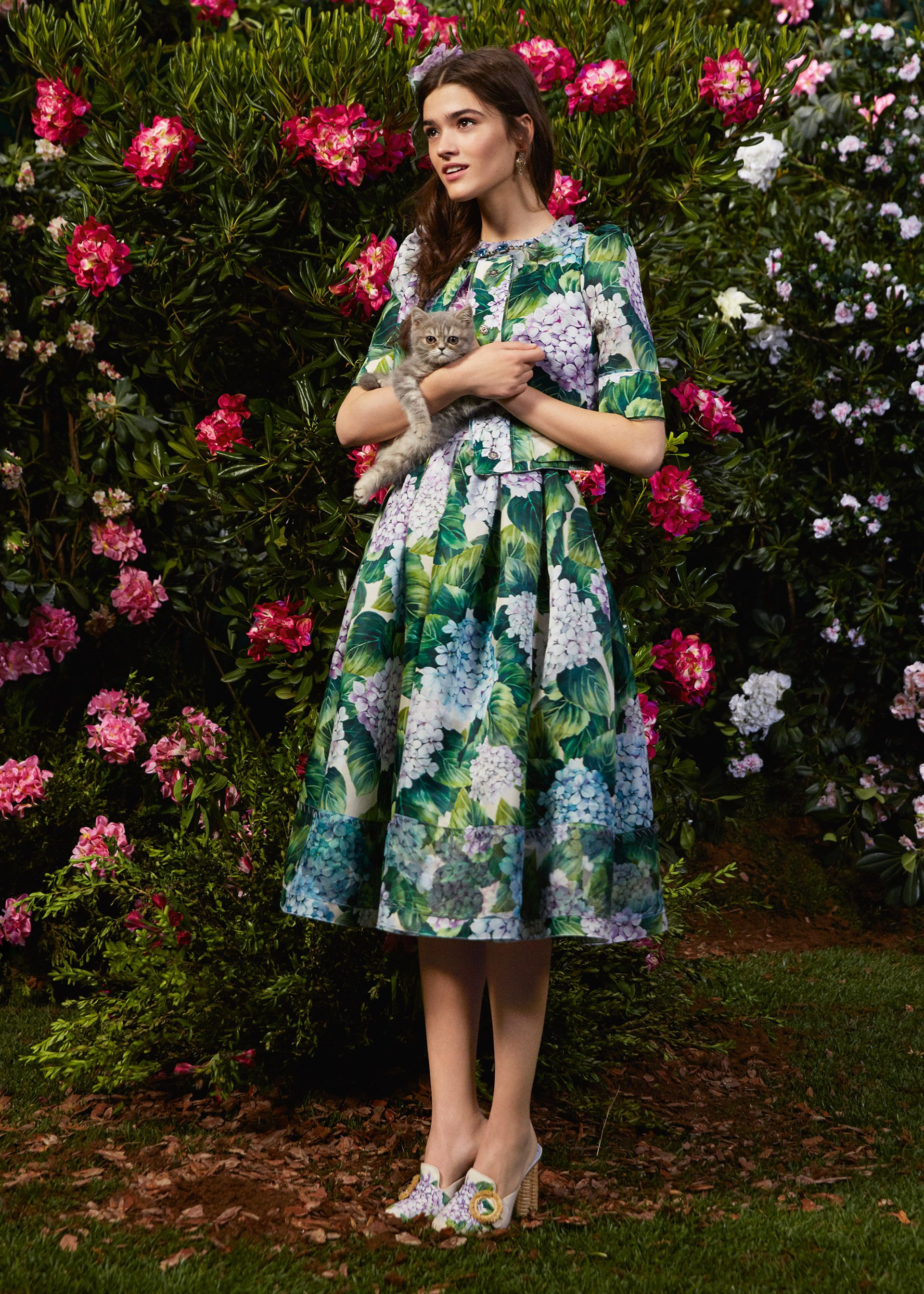 Discover the new Dolce   Gabbana Women s Ortensia Collection for Fall  Winter 2017-18 and get inspired. 6adffeecd