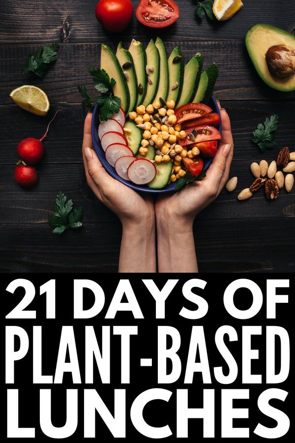 Plant Based Diet Meal Plan for Beginners 21Day Kickstart