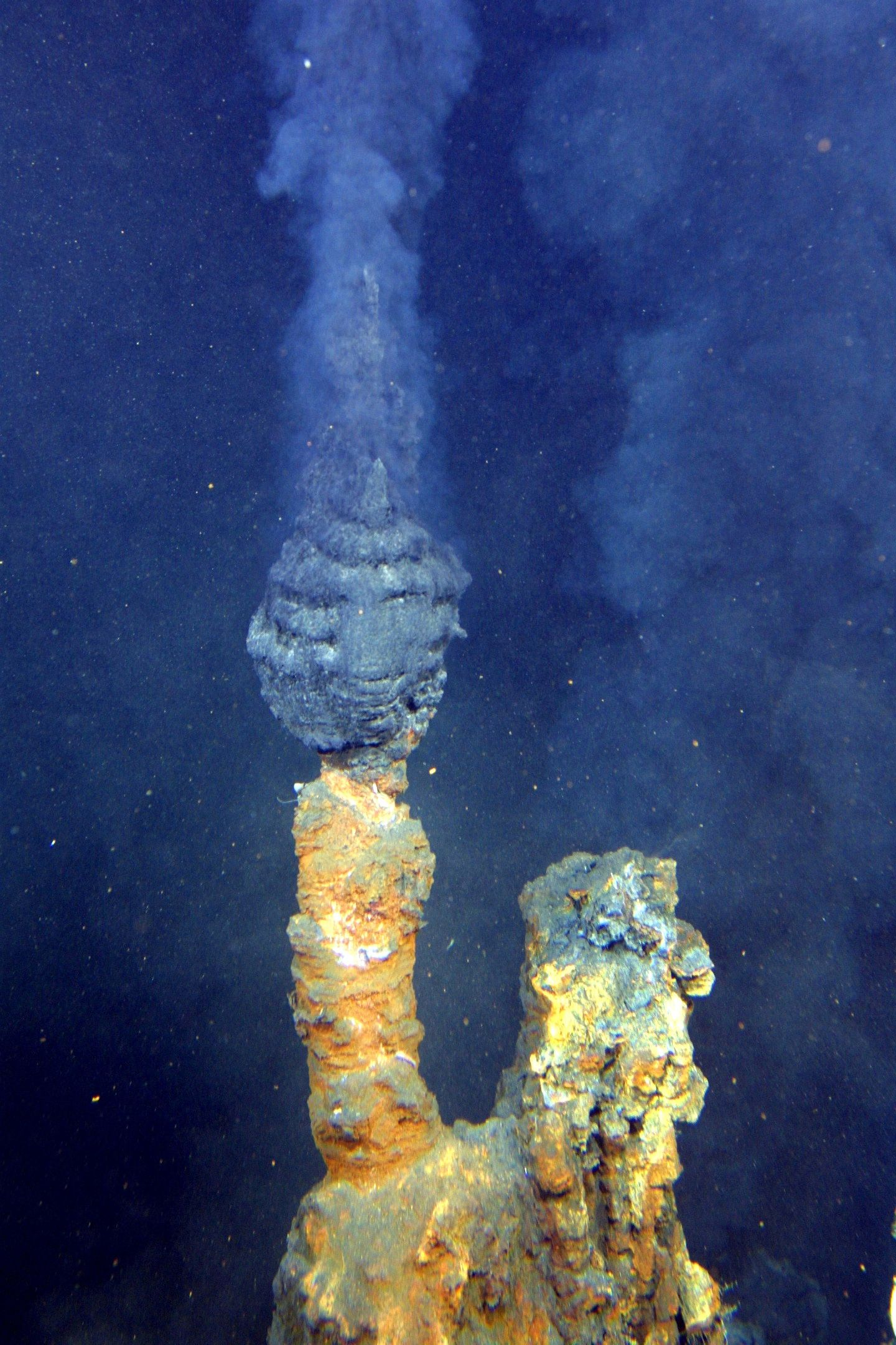 Hydrothermal Vent, A Black Smoker Known As The Brothers This