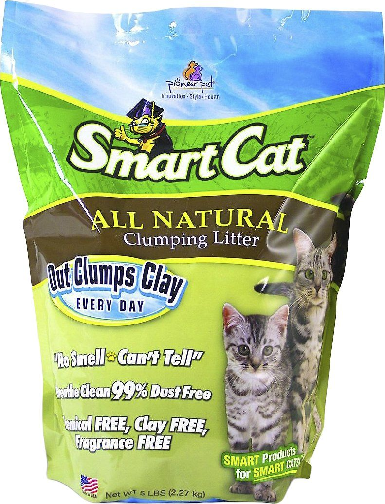 Pioneer Pet Smartcat Unscented Clumping Grass Cat Litter 10 Lb Bag Chewy Com Cat Litter Online Pet Supplies Fragrance Free Products