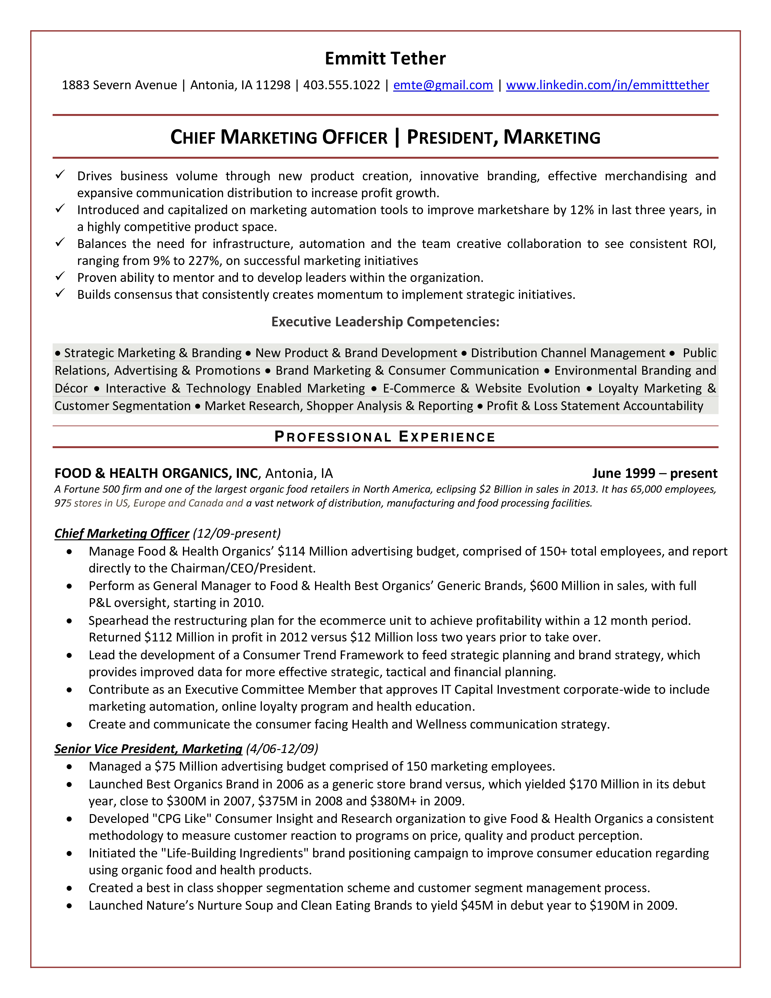 Chief Marketing Officer Resume Stunning Chief Marketing Officer Resume  How To Draft A Chief Marketing .