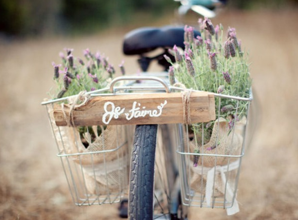 I love to cycle on my cruiser; love the idea of collecting herbs & wildfloers on my ride