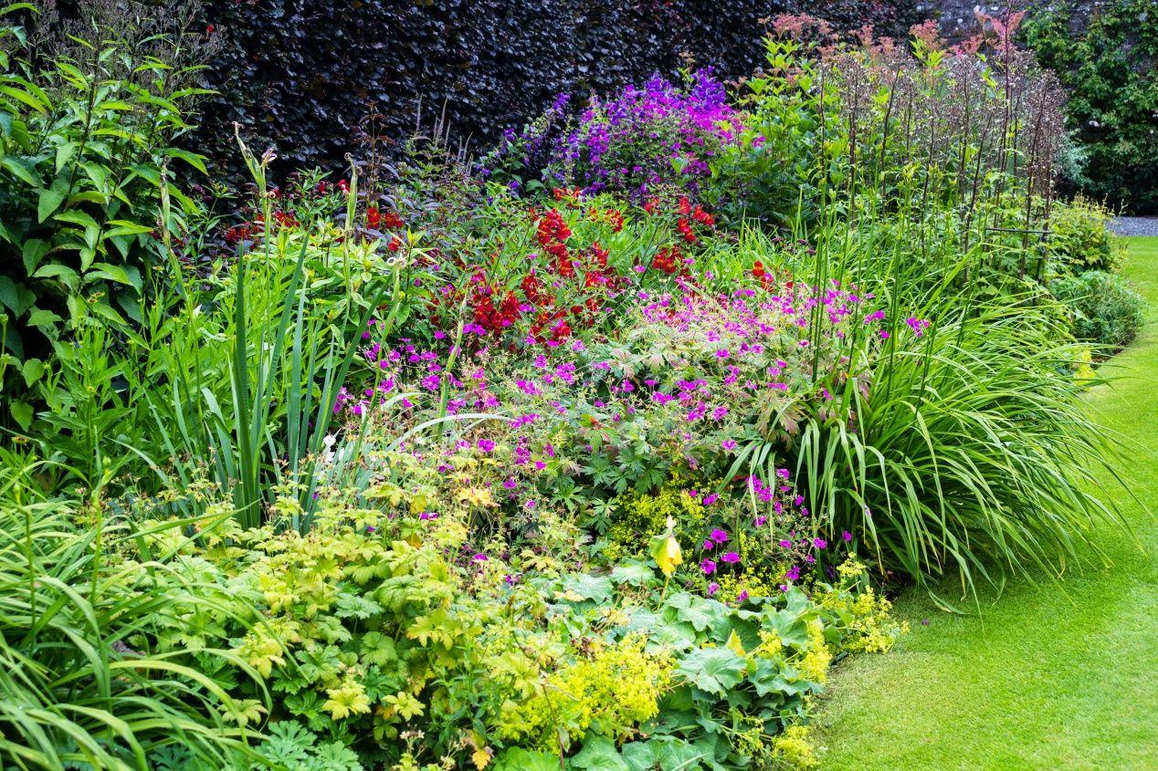 Les Jardins À L Anglaise jardin à l'anglaise   jardin anglais, jardins et amenagement