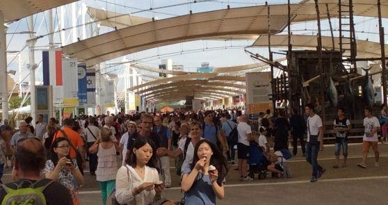 Expo di Ferragosto: tra code e gelato è boom di visitatori - Pagina Nazionale - Il Mattino di Padova