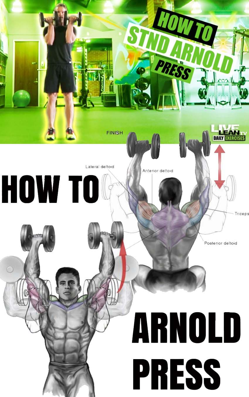 How to Arnold Press (With images) | Shoulder workout ...