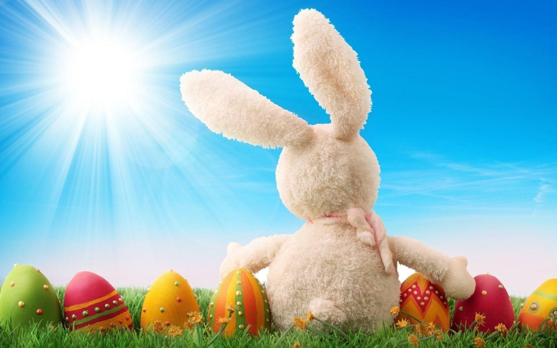 event : easter hd wallpapers bunny 1200x1920px easter wallpaper