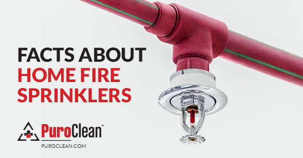Facts about Home Fire Sprinklers Fire sprinklers