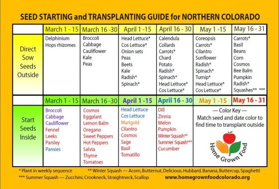 Zone 5 Northern Colorado Seed Starting Planting Calendar Planting Calendar Starting Seeds Indoors When To Plant Vegetables