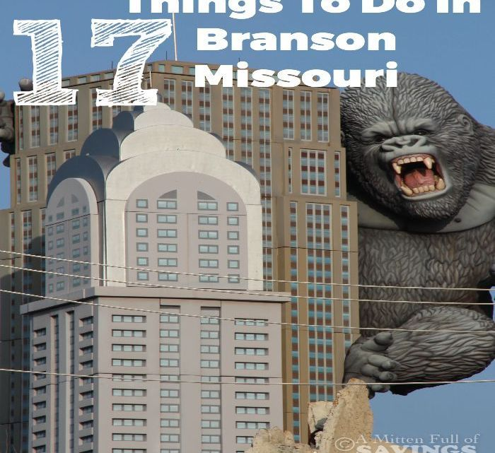 Going to Branson  Check out some awesome Things To Do In Branson Missouri 9a98ac624