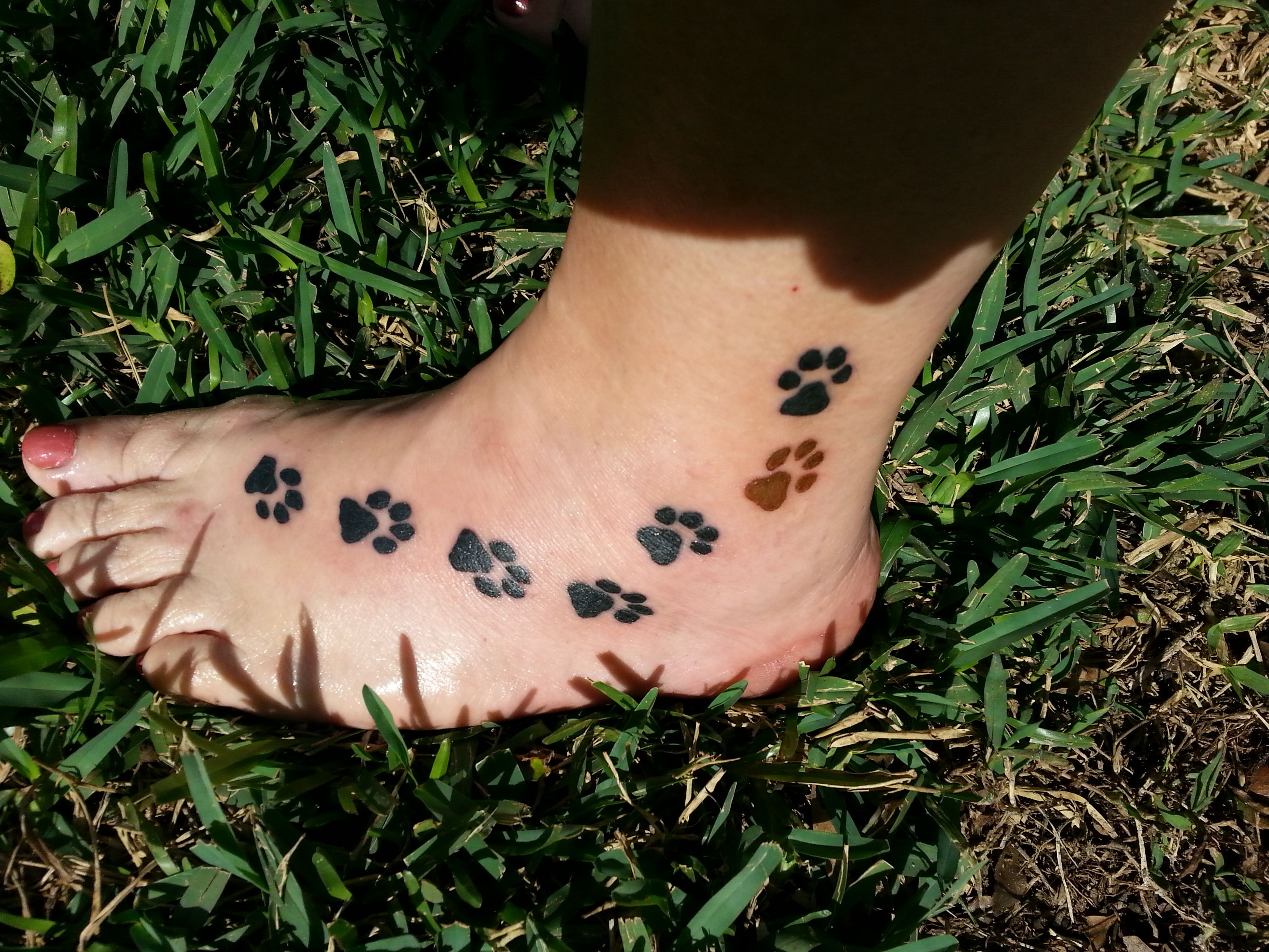 9c3c929fc Had paw print tattoos for each of my German Shepherds that I have had or  have now. The brown paw print is for my Rottweiler/Chocolate Lab who is a  very ...